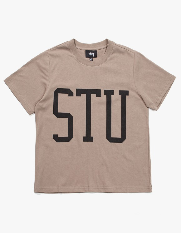 Stussy Allen Big Scale Tee - Taupe | HEIGHTS. | 하이츠 온라인 스토어