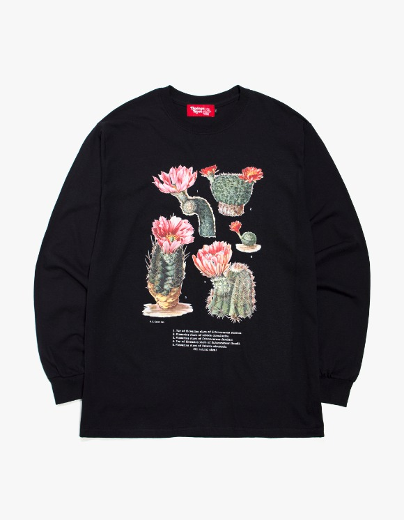 Bodega Rose Enhinocereus SPP. Long Sleeve - White | HEIGHTS. | 하이츠 온라인 스토어