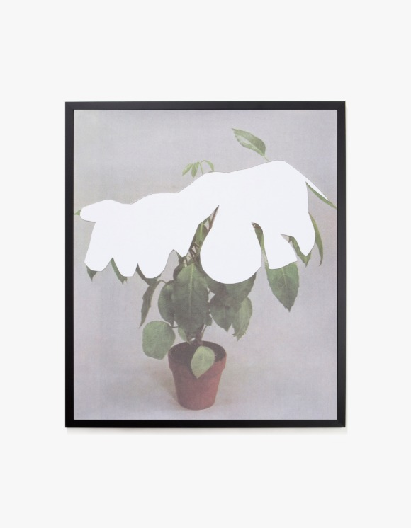 Dashwood Houseplant Covered with Snow by Ruth Van Beek - Frame | HEIGHTS. | 하이츠 온라인 스토어