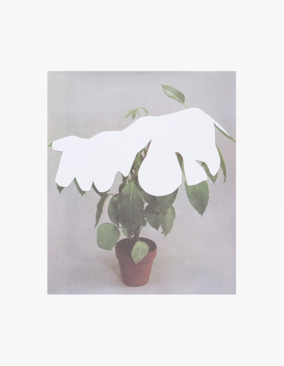 Dashwood Houseplant Covered with Snow by Ruth Van Beek - Poster | HEIGHTS. | 하이츠 온라인 스토어